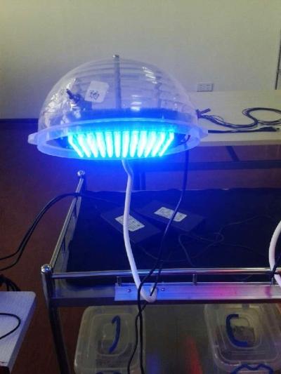 激光疼痛治疗仪如一盏台灯。