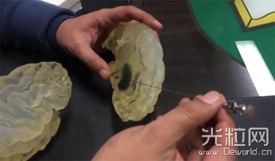 3D打印人脑