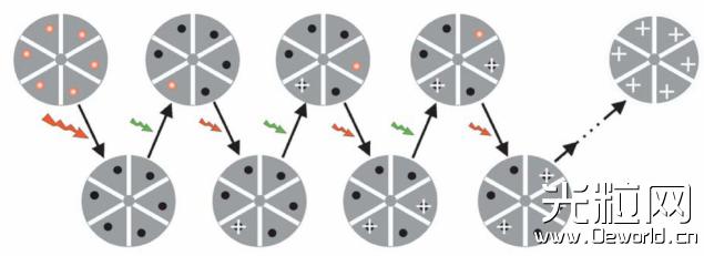 基于单分子定位技术的超分辨显微成像