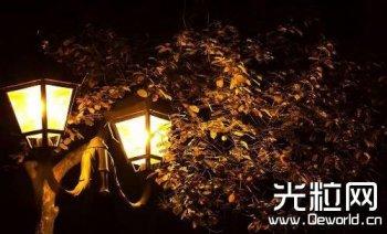 为避免景观灯伤人 苏州明年将更换1.7万套LED光源