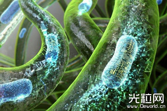 "MIT开发基于""细菌墨水""的3D打印纹身贴:可对不同化学刺激作出反应"