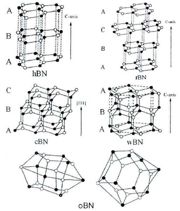 纤锌矿氮化硼    正交氮化硼      氮化硼主要物相的结构示意图